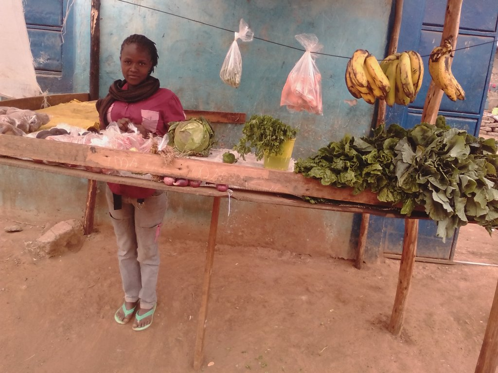 Family Economic Empowerment in the Kenyan Slums