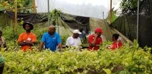 Day 2 farmer training