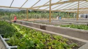 Farmers tend their new system in Alston