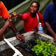 Women see aquaponics as a path to self-reliance