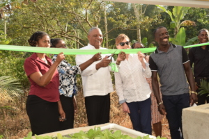 Ribbon cutting to hand over Clarendon systems