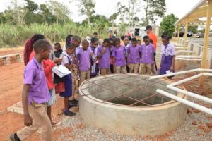 Clarendon schoolchildren check out fish tank