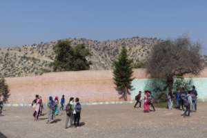 Argan trees are everywhere, even in the school