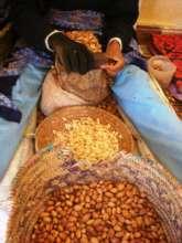 Argan nut processing