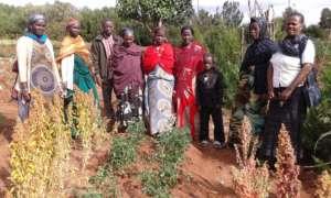 Farmers working with GrowEastAfrica