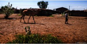 ADRA/ Ethiopia
