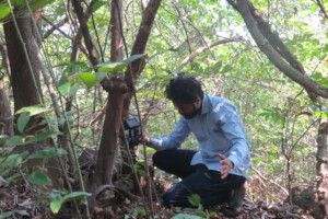 Setting up Camera Trap