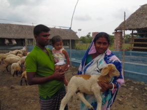 Coastal people are happy with the livestock