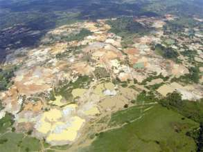 The swamp degraded for mining
