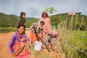 A group of women plant trees together