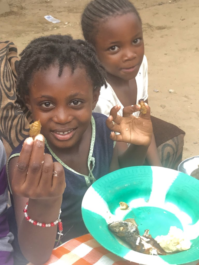 Feed DR Congo's Orphans through climate-smart ag