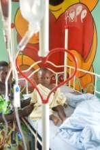 Whisper's patient is receiving blood