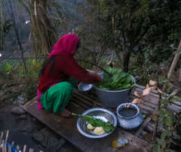 Villagers can prepare fresh produce for dinner