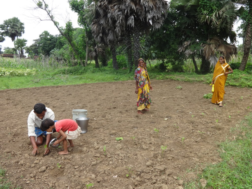 Plant Kitchen Gardens for Families in Need, India