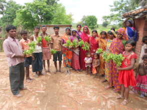 Kitchen Gardens: A Community Works Together