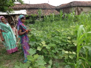 Empowering Women and Communities: Kitchen Gardens