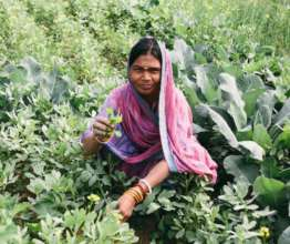 Lalita Enjoys Being Pro-Active Growing Food