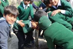 Provide solar and clean water to school children