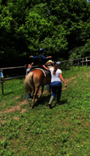 Exercising on the horse