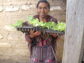 Candelaria with her seedlings ready to plant.