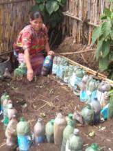 Tomasa with her garden
