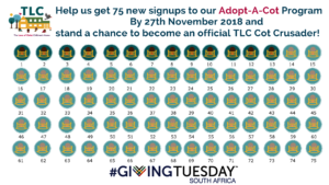 Our Giving Tuesday Goal Chart!