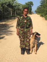 Belgian Malinois dog with an elite Mamba
