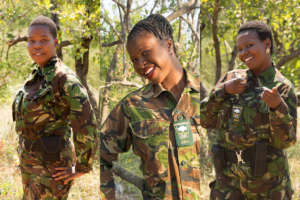 Expand the Black Mambas Rhino Anti-Poaching Unit