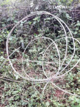 Snare Cable as used to kill the Banvai Tigress