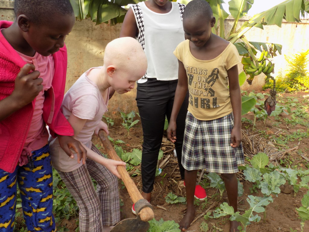 Empowering Girls Economically with Poultry Farming