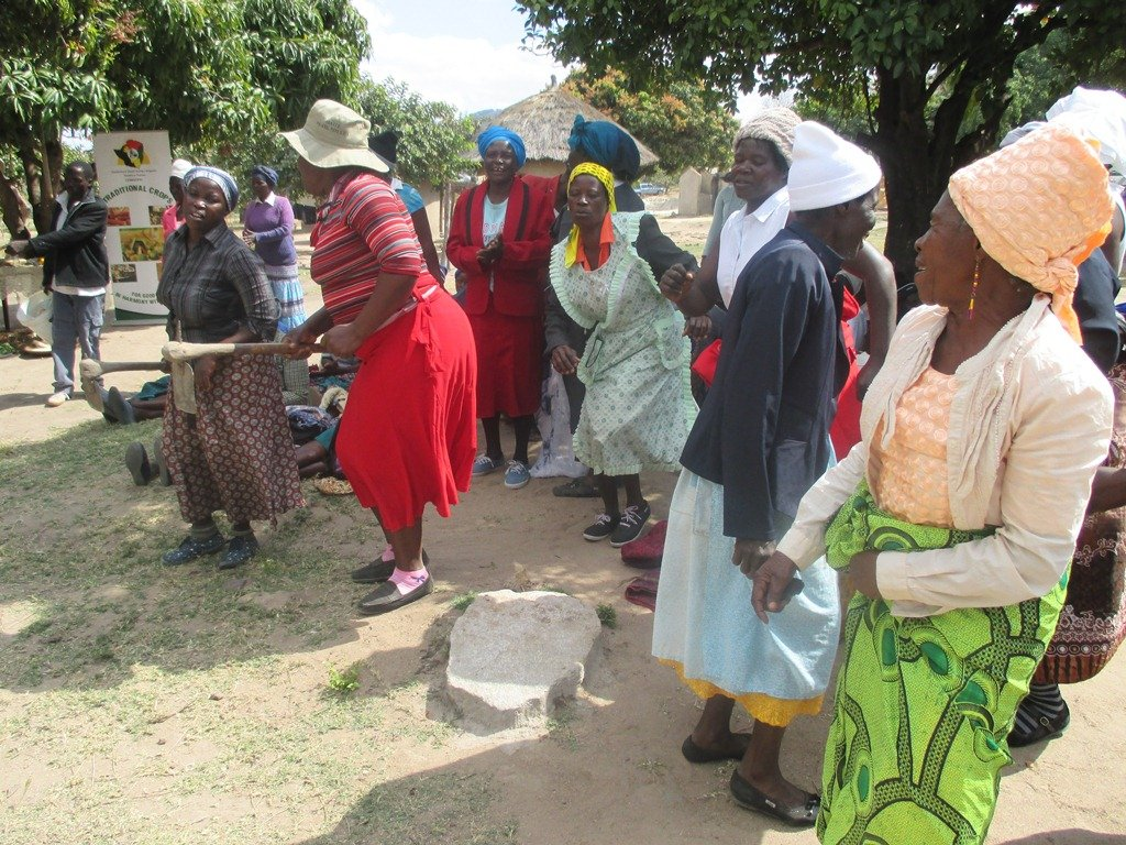 Pigs Give Wings to 50 Rural Women in Zimbabwe