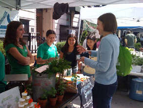Grown in Somerville booth