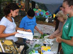 Schoolyard Gardens Program