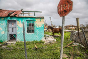 71% of houses are damaged beyond repair