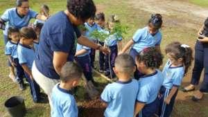 Volunteers plant trees in Guayama, PR