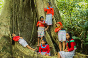 The Girls & an ancient Tree