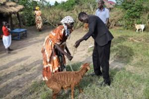 Widow receiving her goat