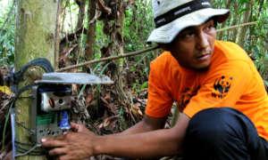 WWF-Indonesia / Tiger Survey Team