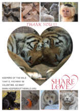 Thank you for sharing your love with the animals!