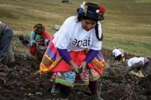 Putis, Peru
