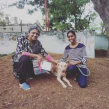 Blind Pet Raja Going To His Forever Home