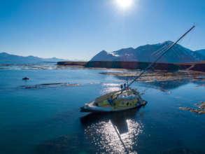 Nanuq arrives in Svalbard