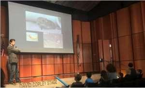 Assembly presentation