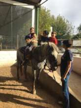 Horse-Assisted Therapy Project, Argentina