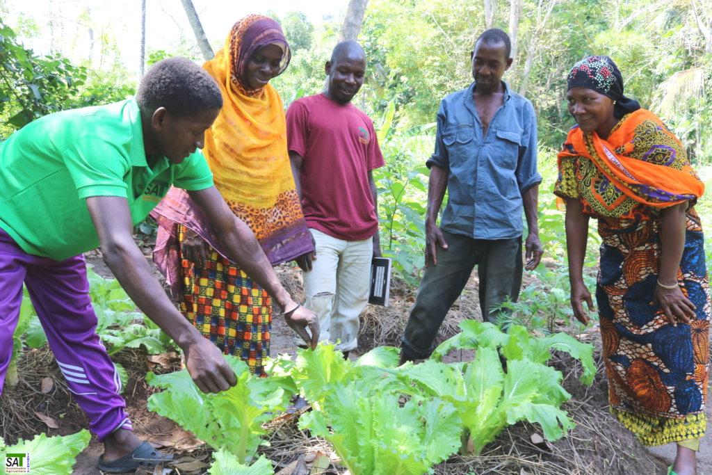 Organic Farming for Small Farmers in Tanzania - GlobalGiving