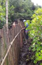 Locals working together to installing the fence.