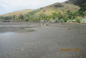 The proposed mangrove planting site.