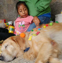 Angelina participating in animal assisted therapy.