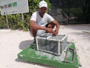 Local Coral Gardener
