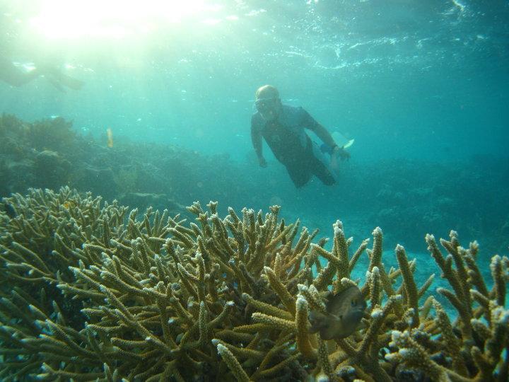 Transforming Local Fishermen Into Coral Gardeners
